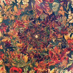 Leif Podhajsky #pattern #flowers