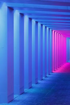 #neon #purple #pink #light #stripes