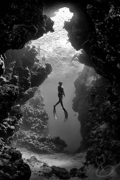 Photography inspiration #bw #underwater