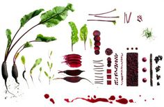 food photography maren caruso 2 #photography #food #conceptual #ingredients