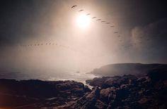 Jonas Eriksson » Every Reason to Panic #photography
