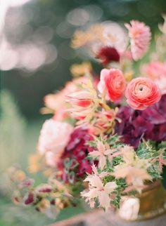 flower #nature #soft #flower #female #green