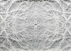 CAROLINE JANE HARRIS ARBOREAL MATTER, 2014 79 X 103 X 7 CM HAND-CUT LAYERED MATT PAPER