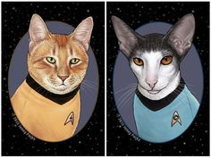 Cat Heroes by Jenny Parks