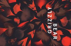 Grizzly Bear by Studio Beuro