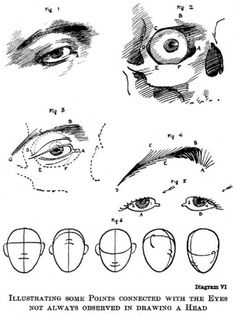 diagram06.jpg (JPEG Image, 527x703 pixels) #diagram