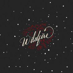 Wildfire - John Mayer - Isaac Villanueva