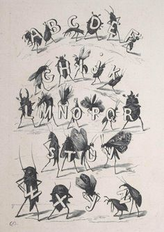Illustrations by Fortuné Méaulle for Alphabet des Insectes by Leon Becker(France, 1883) #insects #illustration #alphabet #typography