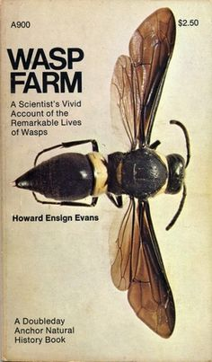 Howard Ensign Evans / WASP FARM / $2.50 #history #wasp #design #graphic #book #bug #troller #insect #fred #science