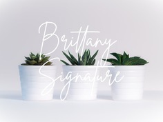 Brittany Signature - Free Fashion Font