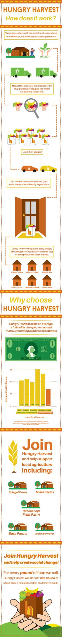 Hungry Harvest Infographic by Matt Hodin