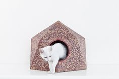 The Cat Box by Delphine Courier-13 #cat #box