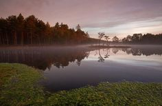 Andrei Reinol #inspiration #photography #nature