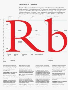 __ #typography