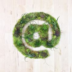 """""""@"""" Garden #sculpture #airplants #hashtaggarden #gifts #succulents #atsymbol #art #artweheart #moss #green"""