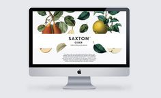 supply_saxton_06 #packaging #system #web #cider