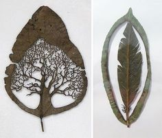 Leaf Cut Art by Lorenzo Durán #tree #feather #nature #art #leafs