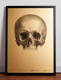 Image of We Die For Beauty Limited Edition Poster #print #art