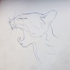 Pencil, Sketch, Illustration, Cat, Micheal Hanly #illustration #cat