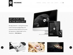 21 Breathtaking Examples of Minimal Color Usage in Web Design | Inspiration
