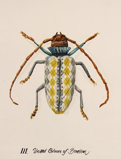 Urban Bugs on Behance #paint #bugs
