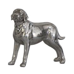 Labrador Dog Facing Left