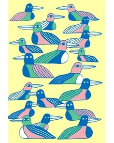 Marcus Oakley #birds #illustration