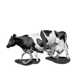 Milk? #art #vintage #modern #collage #surrealism
