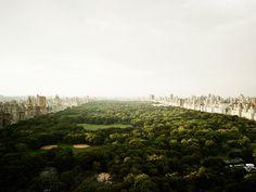 PATIENCE Color Photographs by Josef Hoflehner & Jakob Hoflehner #new #photo #city #park #central #york #green