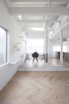 Cat House by Seiji Iwama Architects