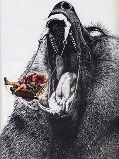 Marieaunet: Jean Solé - Animaleries #bear #illustration #girl #swing