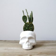 Ceramic Skull Planter–i would much appreciate this in my house #wicked #skull #cactus #planter