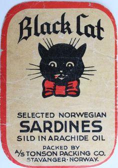 BLACK CAT SARDINES