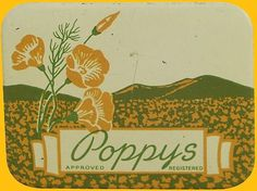 coqueterías - retrogasm: Vintage Poppy's condoms… I wonder if... #packaging #vintage #label
