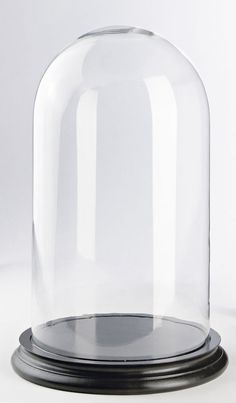 Glass Cloche, Wildhagen