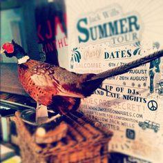 Game Bird #pheasant #bird