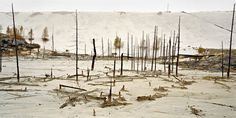 Uranium Tailings #12 Elliot Lake, Ontario 1995