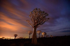 Beautiful Nature Photography by National Geographic Photographer Michael Melford