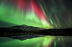 500px / Photo #sky #aurora #photo #lights #photograph #stars #arctic
