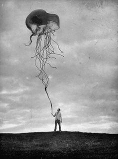 ZIANNE #jellyfish #dream