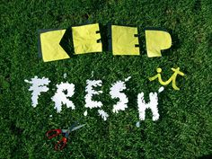 KEEP it FRESH on Typography Served #keep #it #fresh #typography