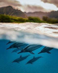 Stunning Travel and Adventure Photography by Chun Chau