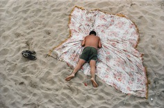 Image result for alex webb beach