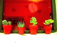 emoving*: Essential Córdoba (Argentina) #red #handcraft #argentina #shop #pot #photography #cactus