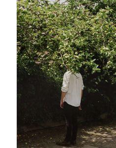 Helen Korpak #tree