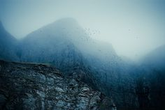 Kimmo Savolainen | PHOTO DONUTS DAILY INSPIRATION PHOTOGRAPHY #birds #mountain #fog