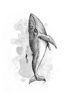 whale - Anastasis