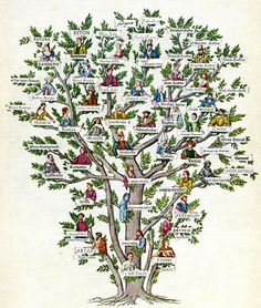 Family Tree of Typography #illustration #family #tree #typography