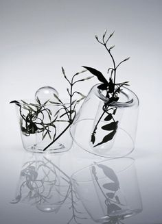 iainclaridge.net | Page 19 #glass #vase