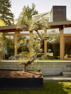 garden, a Mid-Century Transformation by Rerucha Studio